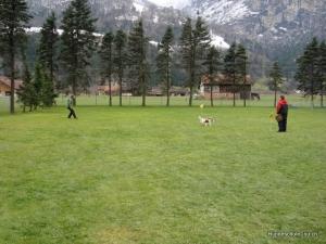 Hunderhalterbrevet Erstfeld 12.12.2010