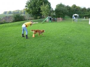 Inu Jugend und Hund